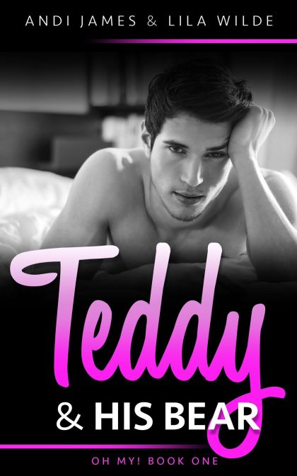 teddycover